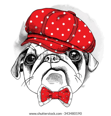 The image of the portrait dog Pug in the cap and with bow. Vector illustration. - stock vector