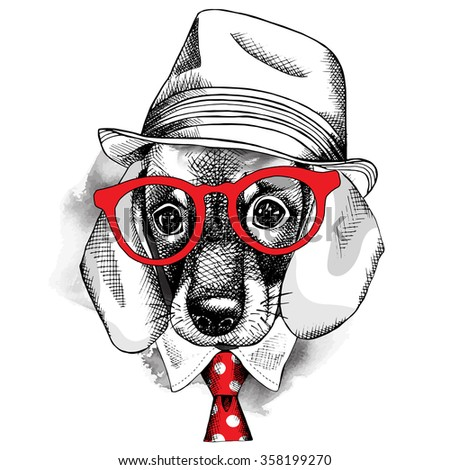 The image with the portrait of the dog Dachshund in the hat with the glasses and with the tie. Vector illustration. - stock vector