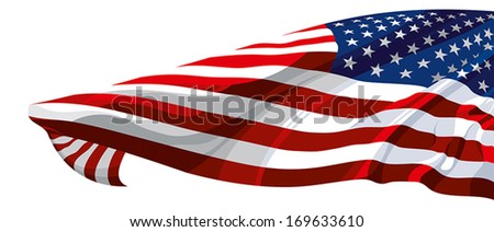 The national flag of the United States of America - stock vector