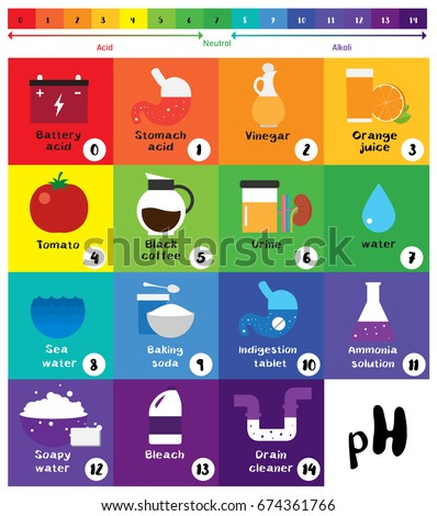 P H Scale Universal Indicator P H Color Stock Vector Royalty Free