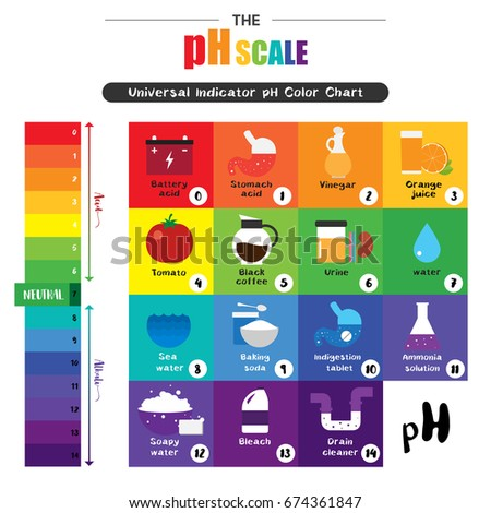 Ph Scale Stock Images RoyaltyFree Images  Vectors  Shutterstock