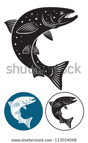 The picture shows the salmon - stock vector
