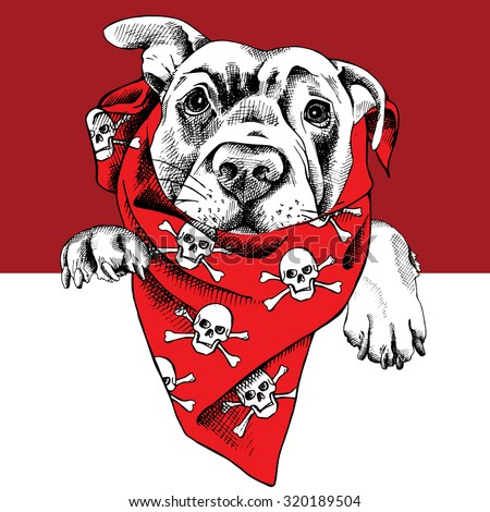 The portrait of a dog in the neckerchief with the image skulls. Vector illustration. - stock vector