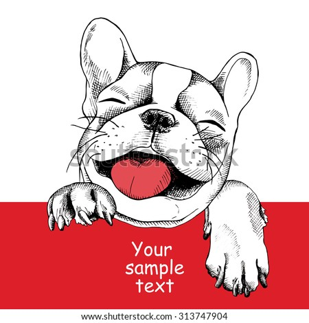 The poster with a portrait of the dog French bulldog. Vector illustration. - stock vector