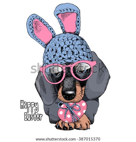 The poster with the portrait of the dog Dachshund in the bunny hat and with glasses. Vector illustration. - stock vector