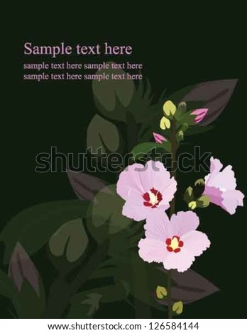 The rose of Sharon which is national flower of Korea with pink and yellow buds background - stock vector