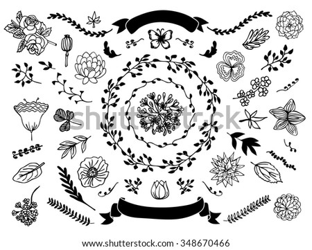 Set handdrawn vector decorative elements your stock vector 2018 the set of hand drawn vector decorative elements for your design leaves swirls junglespirit Choice Image