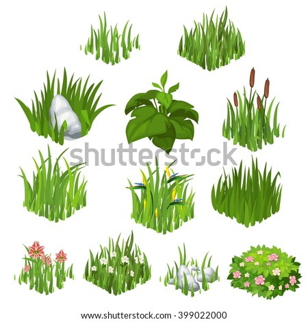 The set of herbaceous plants isolated on white background. Vector illustration. - stock vector