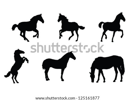 The set of Horse silhouette