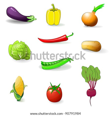 The set of vegetables vector