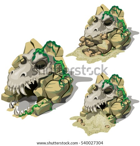 The stage of digging up the fossil skull of ancient animal. Archaeological discovery of skull of ancient predator with stones and sand. The remains of prehistoric animals isolated on white. Vector.