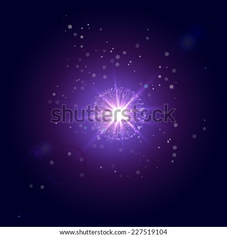 The star in the winter sky - stock vector