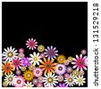 The vector. Flowers on a black background - stock photo