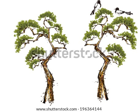 The view of magpie in the pine   - stock vector
