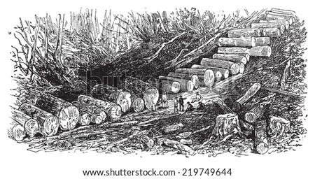 The wagon road, vintage engraved illustration. Journal des Voyages, Travel Journal, (1879-80). - stock vector