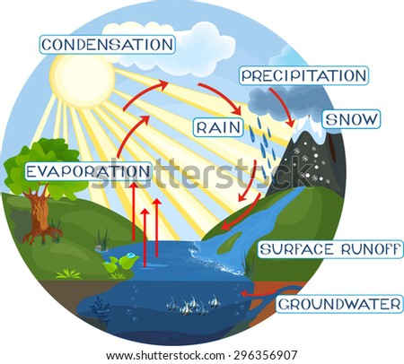 Water cycle stock images royalty free images vectors shutterstock the water cycle ccuart Image collections