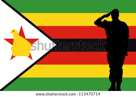The Zimbabwe flag and the silhouette of a soldier saluting