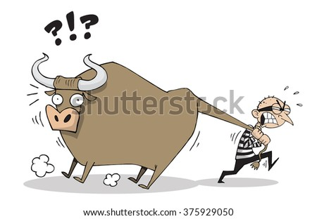 Thief stealing an ox or a big cow - stock vector