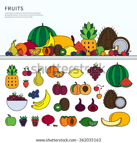 Thin line flat design of the different fruits on the table. Fresh fruits icons for restaurant menu, watermelon, berries, tropical fruits isolated on white background