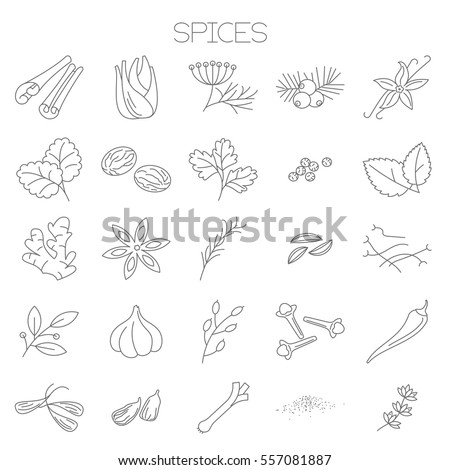 Thin line flat design spices menu  vector icon set  for application, website,  online store and paper menu design.