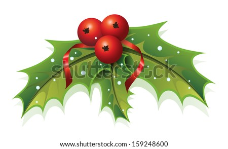 This image is a vector file representing a Holly Christmas Plant. / Holly Christmas / Holly Christmas - stock vector