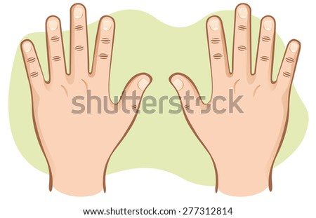 This is part of the human body, hands pair of open top view. Ideal for educational material and institutional - stock vector