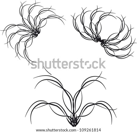 three beautiful black pattern on white background - stock vector