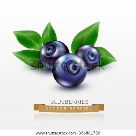 three blueberries with green leaves isolated on a white background