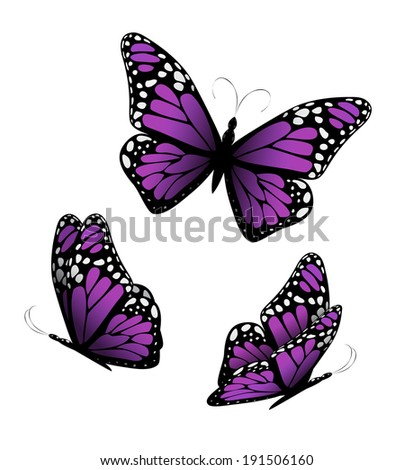 Three butterflies in purple tones. Vector - stock vector