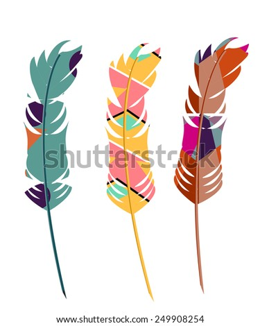 Three color feathers blue, pink and brown vector set isolated, peacock feather, parrots feathers