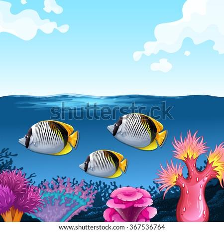Three fish swimming under the ocean illustration - stock vector