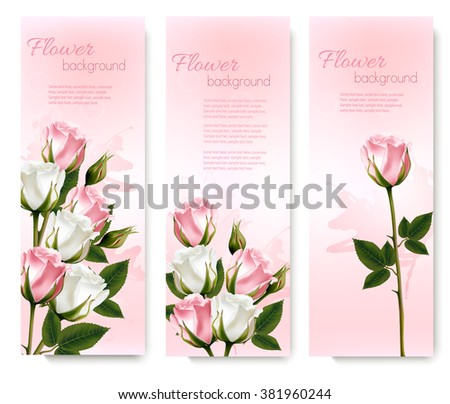 Three holiday banners with pink beautiful roses. Vector - stock vector