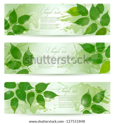Three nature background with green spring leaves. Vector illustration. - stock vector
