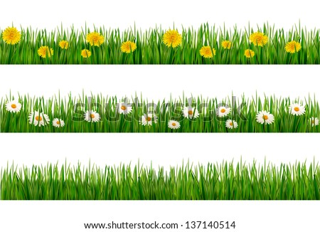 Three nature backgrounds of green grass with dandelions and daisies. Vector. - stock vector