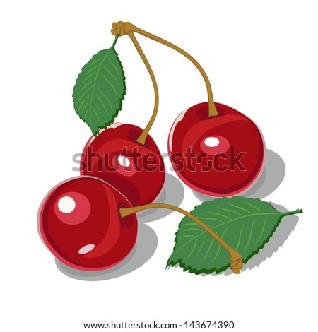 three ripe cherries on a white background - stock vector