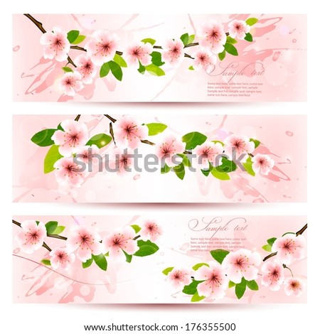 Three spring banners with blossoming sakura branches with spring flowers. Vector illustration. - stock vector