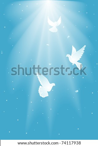 Three  white dove - stock vector