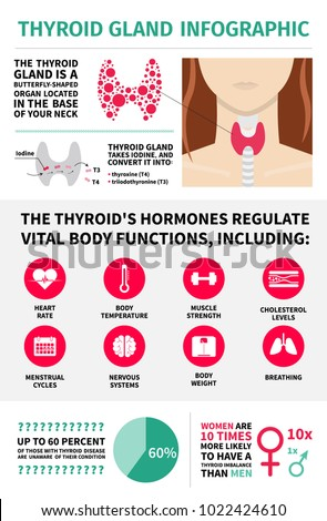 Thyroid gland infographic template hormones vital vector de thyroid gland infographic template hormones vital body functions design elements malvernweather Choice Image