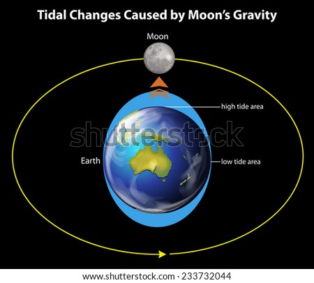 Tidal changes caused by the moon's gravity on a black background - stock vector