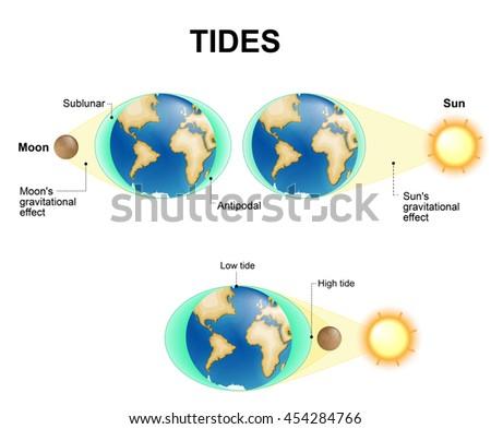 Tide - Wikipedia