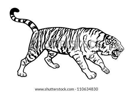 tiger black and white isolated on white background horizontal image side view - stock vector