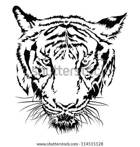 Animal Images Stock Photos amp Vectors  Shutterstock