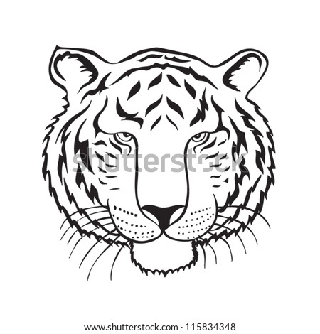 Tiger head Drawing - stock vector