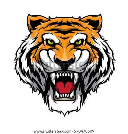 tiger head illustration vector stock vector 570470509 shutterstock rh shutterstock com tigre vectoriel tiger vector free download