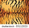 Tiger skin texture. - stock vector