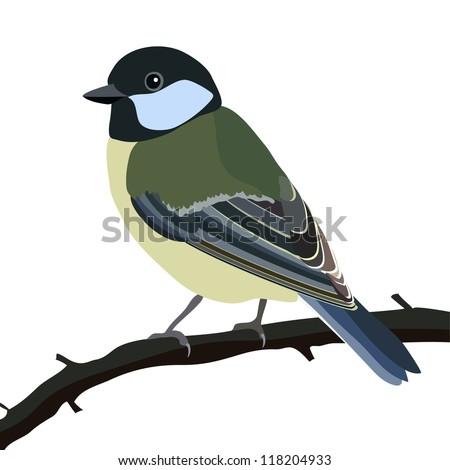 Do Birds Get Shocked When They Sit on Wires? | Wonderopolis