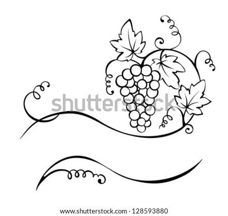 Title - the vine