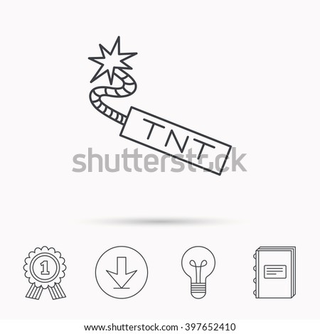 TNT dynamite icon. Bomb explosion sign. Download arrow, lamp, learn book and award medal icons. - stock vector
