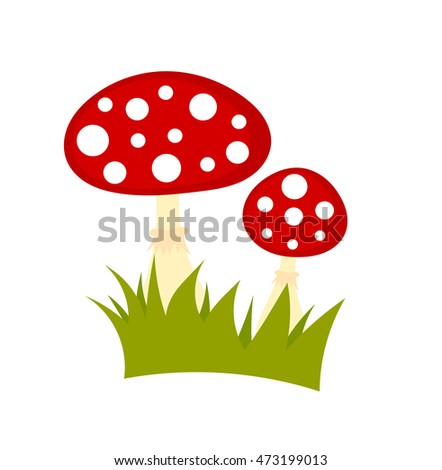 Toadstool mushrooms isolated on white background. Vector illustration