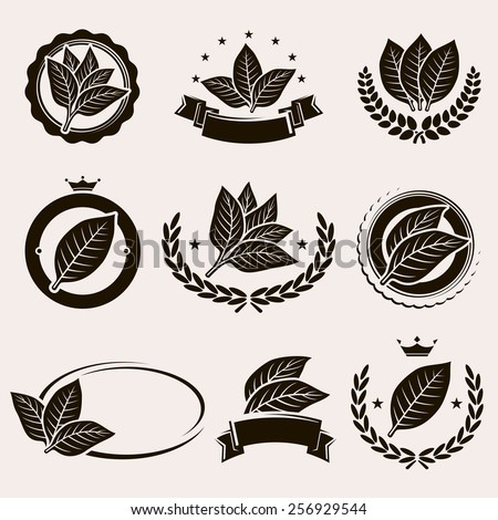 Tobacco leaf label and icons set. Vector - stock vector